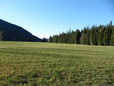 for Sale - 1042ABC Mabel Lake RD, Enderby, BC V0E 1V5 - MLS® ID 10091817.  This is a wonderful 299 acre Riverfront farm land with irrigation rights from the river. It's flat land with a mixture of irrigated hay land, and treed areas that are ideally suited to a cattle or horse farm. The house is a spacious 2 story, 5 bedroom home with a full basement. Vernon Bc, Lots For Sale, Horse Farms, Real Estate Investing, Investment Property, Irrigation, Cattle, Acre, Basement