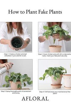 Use this guide to show you how to plant your fake plants! In 4 simple steps, you're on your way to enjoying fake plants that look real good. Simply use chicken wire as a base, secure with dirt or rocks, protect, and enjoy! Shop artificial plants and handmade planters at Afloral.com. Real Plants, Chicken Wire, Artificial Plants, House Plants, Grass, Rocks, Planters, Create, Simple