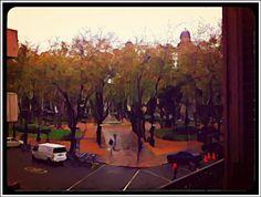 ... una hermosa postal de otoño. la lluvia presente, el intenso dorado en las hojas de los árboles, las figuras de los transeúntes escapando del frío...