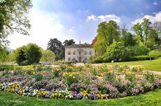 Basel Goes Botanical Destination Wedding, Wedding Destinations, Merian, Basel, Botanical Gardens, Spring Time, Switzerland, Natural Beauty, Playgrounds