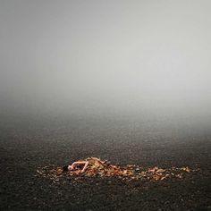 Fine Art Portrait Photography by Michal Zahornacky #inspiration #photography