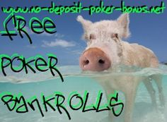 Heard the Buzz about Free Poker Bankrolls No Deposit, but You are still skeptical? This Comparison of trustworthy Sources of Free Poker Bankrolls will tell You where You can obtain no deposit poker bonuses without fear of getting scammed.