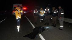 Gelibolu Karayolu Bahçeköy Sapağı yakınlarında plaka ve sürücüsü belirlenemeyen aracın çarptığı 23 yaşındaki Osman Şinas öldü.