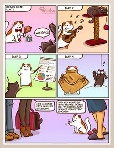 The one about dating, vol.2 | Catsu The Cat