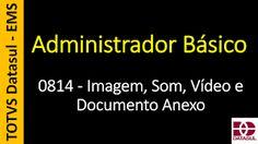 Totvs - Datasul - Treinamento Online (Gratuito): 0814 - EMS - Administrador Básico - Imagem, Som, V...