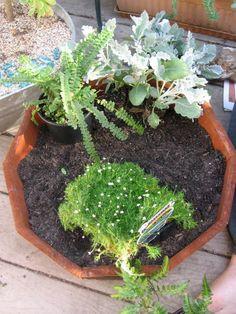 Cool miniature gardens