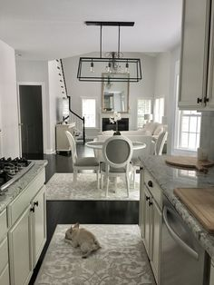 Interior design neutral tones French bulldog grey white kitchen living room dining room real estate