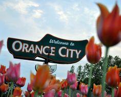 Welcome to Orange City