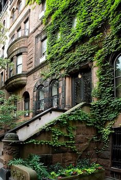 new york brownstone. My husband lived as a teenager in an apartment located in a brownstone. New York Brownstone, Brooklyn Brownstone, New York City, Photographie New York, Ville New York, A New York Minute, Voyage New York, West Village, Concrete Jungle