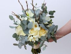 Ivory roses, freesias and pussy willow arranged with eucalyptus in a handtied posy bouquet.