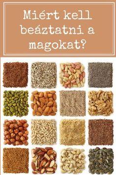 Miért kell beáztatni a magokat? Bath Tea, Jaba, Diy Beauty, Dog Food Recipes, Herbalism, Paleo, Medical, Gardening, Nature