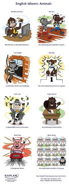 Animal Idioms!