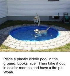 We found this very cool (pardon the pun) idea for a dog pool you can build in your backyard courtsey of the Money Pit. Take a look at how they built it. They placed a kiddie pool(Cool Pools Backyard) Outdoor Fire, Outdoor Living, Outdoor Decor, Outdoor Ideas, Outdoor Pool, Dog Pond, Photography Beach, Photography Tips, Landscape Photography
