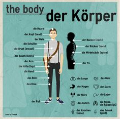 """Learn how to use the German sentence """"""""Der Körper"""""""" (The body) by discussing it with the Duolingo community. Foreign Language Teaching, German Language Learning, Learn A New Language, Dual Language, Study German, German English, German Grammar, German Words, Deutsch Language"""