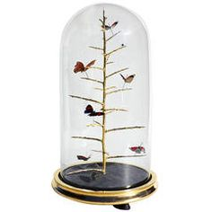 Gilded Blackthorn Dome by Tennant and Tennant