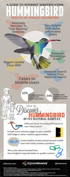 The complete guide to hummingbird: 4 Infographics To Understand The Google's Hummingbird Search Algorithm With New SEO Optimization Tips