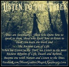 Through Witchy Eyes - Pinned by The Mystics Emporium on Etsy