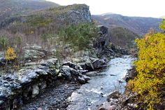 Frost i skogen langs ei elv mot Sulis     http://www.tursiden.no/frost-i-skogen/
