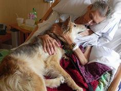 Homeless Man's Dying Wish: Dog Reunion