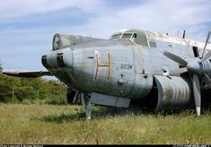 Avro 716 Shackleton MR3 aircraft picture