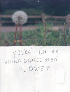 You Are Not A Weed. by vocal-chord, via Flickr