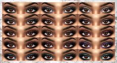 Maya Eyeshadow