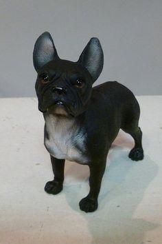 Zwarte brutaal kijkende franse bulldog