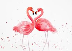 Фламинго сердце - два розовых Фламинго, любовь, романтические, тропических птиц, Фламинго произведения, День Святого Валентина подарок