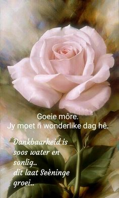 Good Morning Prayer, Morning Prayers, Good Morning Wishes, Good Morning Quotes, Happy Weekend Images, Lekker Dag, Goeie Nag, Goeie More, Afrikaans Quotes