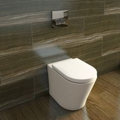 Back to wall toilet. Tile is beautiful...T
