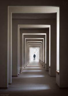 1X - The Cat Who Walks Through Walls by Tomer Eliash