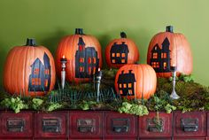 Pumpkin town painted pumpkins. Maybe use squash or gourds too?