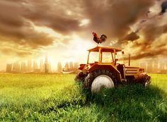 Gıda güvenliğindeki çok büyük tehlike 2003-2013 seneleri arasında, çiftçinin esas girdi maliyetleri % 400 oranında arttı. 2003'te 3,6 milyar lira olan tarım kredisi büyüklüğü , 10 kat artarak 40 milyar liraya ulaştı. Ürün fiyatları ve maliyetlerin artmasıyla borçlanan 1 milyona yakın çiftçi, üretimi terk etti.