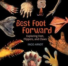 Studies-natural-adaptation-by-examining-different-animal-feet Great Books, New Books, Books To Read, Book Reviews For Kids, Trade Books, Guessing Games, Science Books, Science Ideas, Book Photography