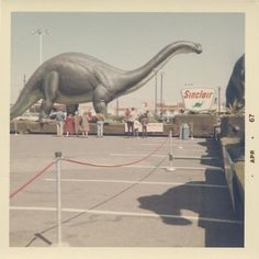A dinosaur originally from Sinclair's Dinoland exhibit at the 1964-1965 New York World's Fair. When the fair ended, they toured the country.