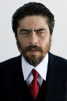 Benicia Del Toro