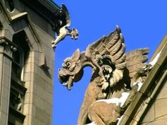 some of the old churches we saw in France had gargoyles on the top of them,  so very cool