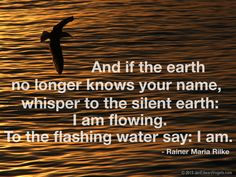 Get Unique Collection of Sea Quotes Pictures with Message For Friends and Family Sea Quotes, Water Quotes, Greek Quotes, Writing Quotes, Poetry Quotes, Wisdom Quotes, Rilke Quotes, Anais Nin Quotes, Rainer Maria Rilke