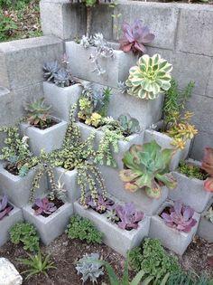 Cinder block succulents, maybe spray paint blocks? cinder block bench Summer To Do List: