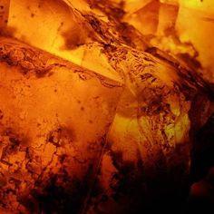 Amber Noir Fragrance Oil - CandleScience