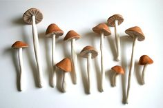 Sugar mushrooms, cocoa bean acorns and sugar leaves! These would be perfect on our wedding cake!!!