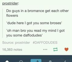 Text posts which are amusing, funny, sarcastic and every other thing … Random Stupid Funny Memes, The Funny, Funny Quotes, 9gag Funny, Funny Sarcastic, Laser Tag, Donald Trump, Funny Tumblr Posts, Writing Tips