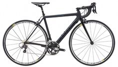 753819f82b6 10 Best SALE! 2016 Specialized Closeout images | Bike shops, Raleigh ...