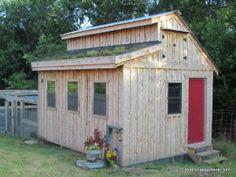 chicken coop july '13