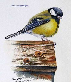 Watercolor Paintings of Birds by Famous Artists