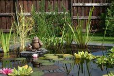 18 Best Garden Landscapes