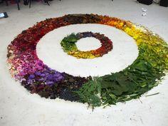 Natural Colour Wheel