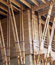 detail_bambou_web