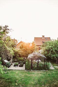 Gardening Classes Near Me Code: 8060032164 Terrace Garden, Garden Plants, Indoor Plants, Indoor Gardening, Garden Cottage, Home And Garden, Porches, Backyard Landscaping, Backyard Greenhouse
