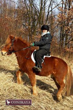 Jesień to idealna pora na naukę jazdy konnej :) #coniraya #konie